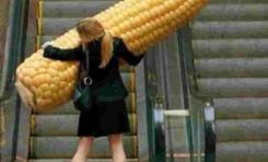 29 απίστευτα αστείες φωτογραφίες που θα πεθάνεις από το γέλιο